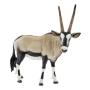 """Schleich""""schleich Wild Life 14759 Oryxantilope"""""""